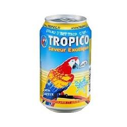 Tropico Exotic 33cl x 24